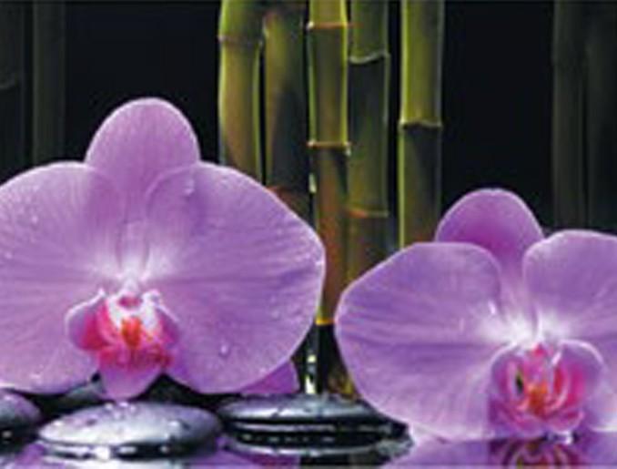 Стеновая панель (Скинали) для кухни - Орхидея и Бамбук