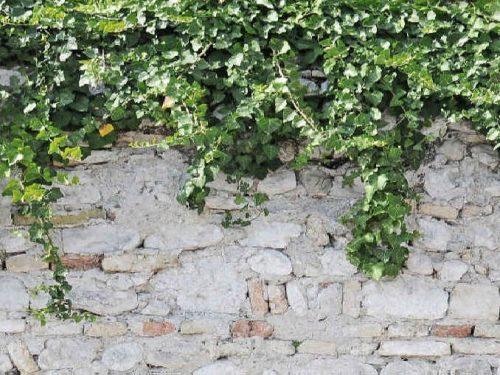 Стеновая панель (Скинали) для кухни - MRA 05